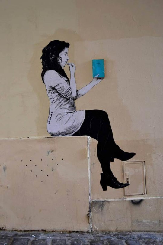 Books - street art by Levalet - picture 3