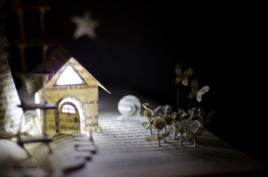 Malena Valcarcel book sculptures - Magic Forest