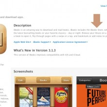 Now iBooks Store