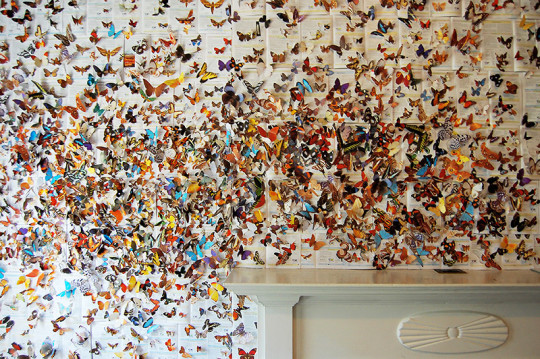 Andrea Mastrovito - art installations from repurposed textbooks - picture 2