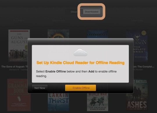 Kindle Cloud Reader - enable offline mode