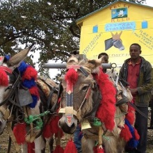 Donkey Mobile Libraries in Ethiopia