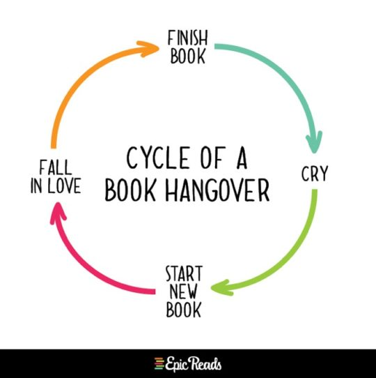 Epic Reads charts - cycle of a book hangover