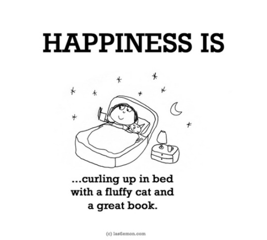 Happiness is... curling up in bed with a fluffy cat and a great book