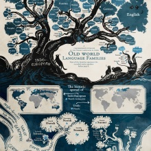 Origins of languages #chart
