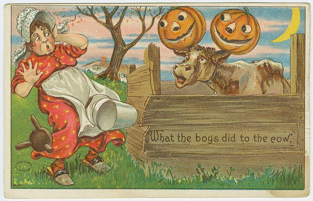 Vintage Halloween cards - What the boys did to the cow
