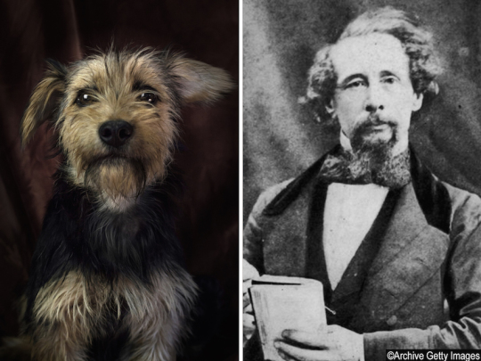 Dogs and famous writers - Charles Dickens