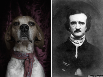 Dogs and famous writers - Edgar Allan Poe