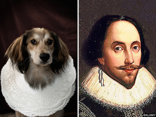 Dogs and famous writers - William Shakespeare