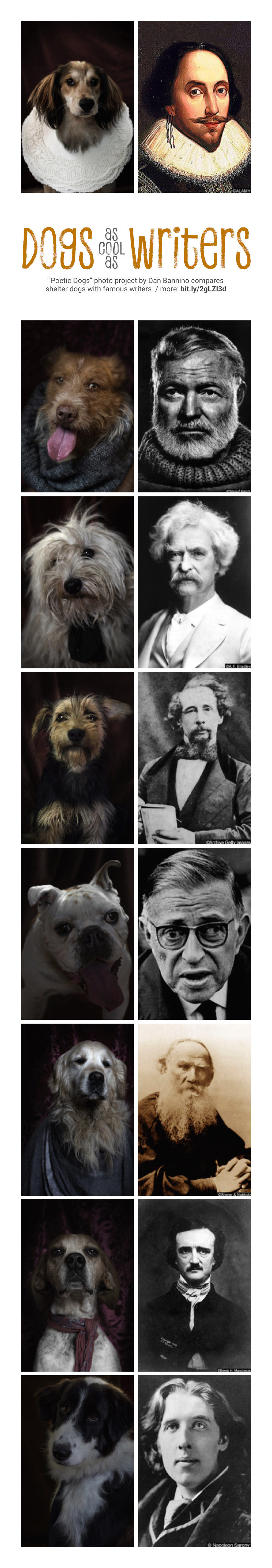 Shelter dogs as cool as famous writers - photo project by Dan Bannino
