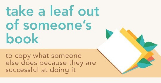 Idioms about books - take a leaf out of someones book