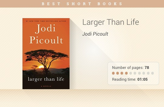 Best short books - Larger Than Life - Jodi Picoult