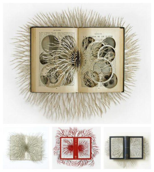 Book art from repurposed book by Barbara Wildenboer