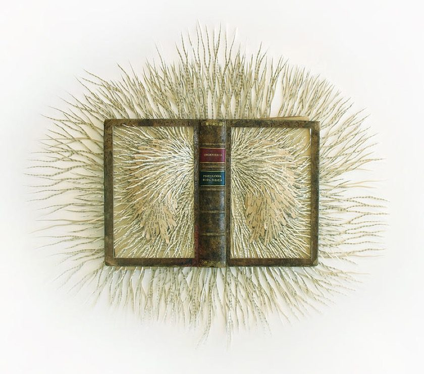 Book sculpture by Barbara Wildenboer - Psigologica Biologica