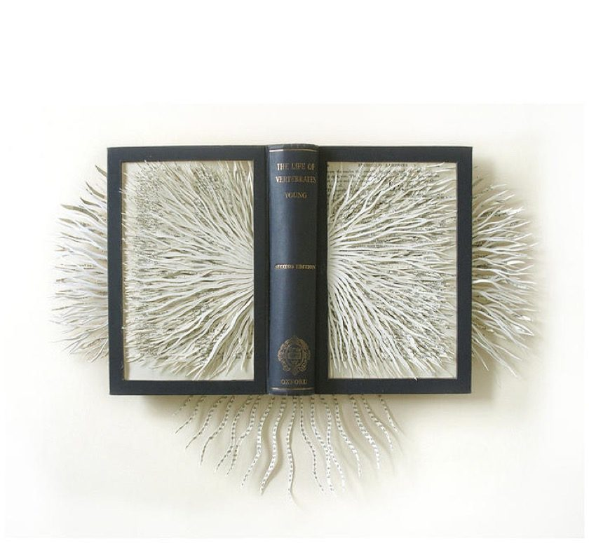 Book sculpture by Barbara Wildenboer -The Life of Wertebrates