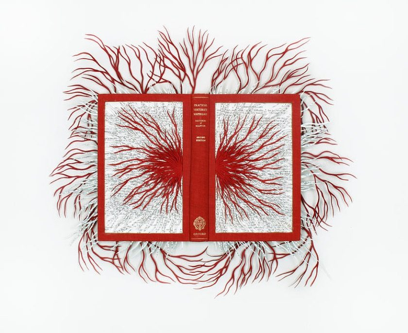 Book sculpture by Barbara Wildenboer - Vertebrate Morphology
