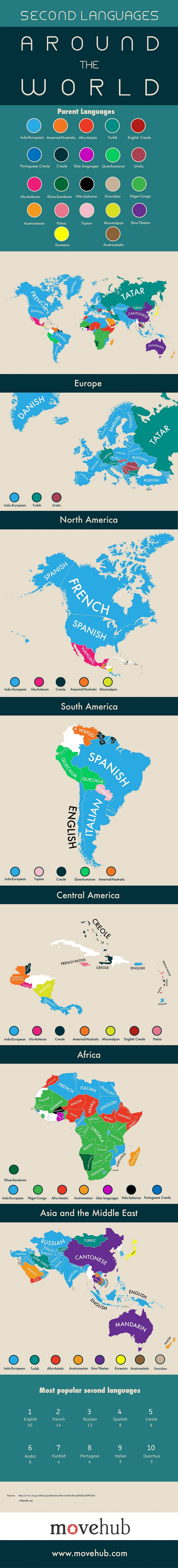 Second languages around the world - infographic