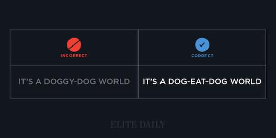 Common English phrases - It's a dog-eat-dog world