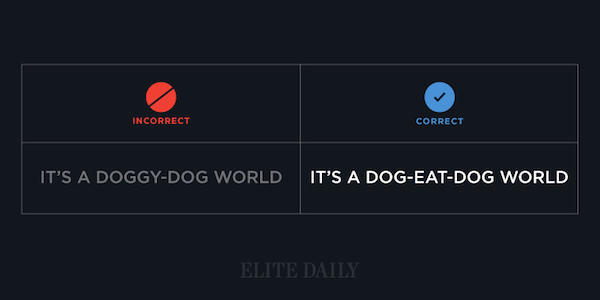 Common English phrases - It's a dog-eat-dog world