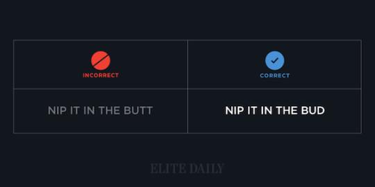 Common English phrases - Nip it in the bud