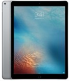iPad Pro 12.9 Space Gray