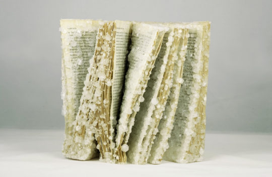 Crystallized Books - The Order of Things