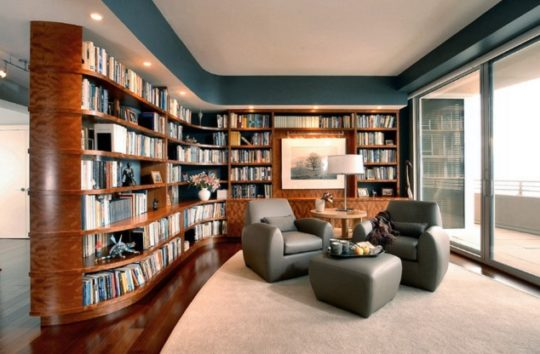 Wonderful Contemporary Living Room With A Library