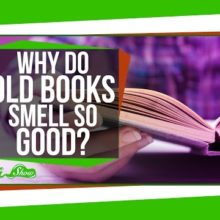 An addictive smell of old books explained - video thumb