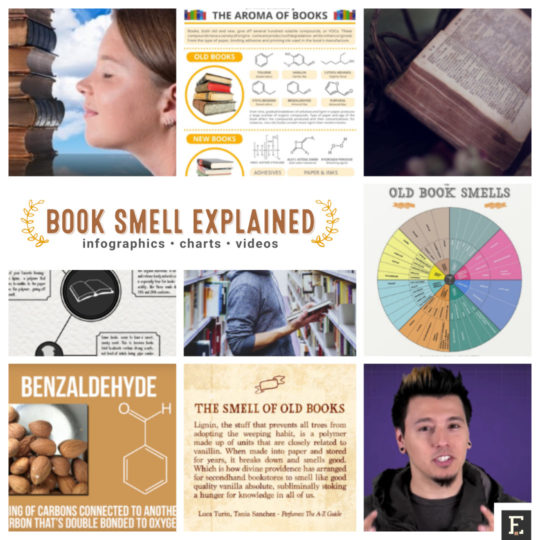 Addictive-book-smell-infographics-chart-