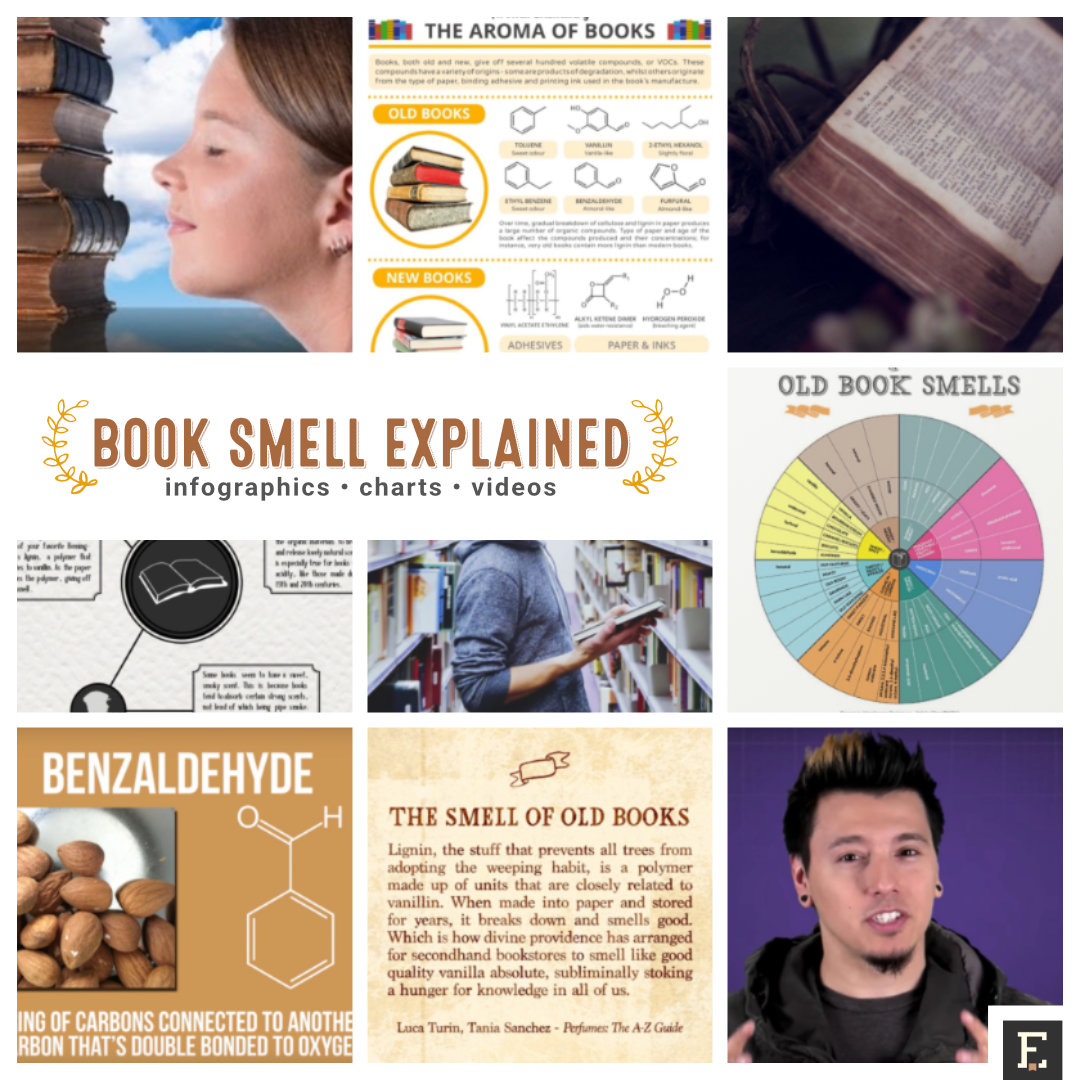 Addictive book smell in infographics, chart, and videos