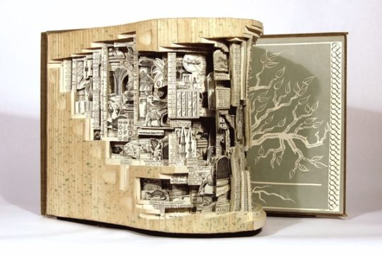 Book art by Brian Dettmer - Webster Two Point Oh, 2008