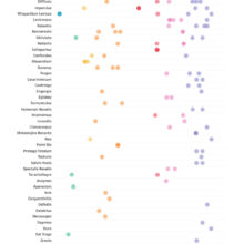 The most used #HarryPotter spells (chart)