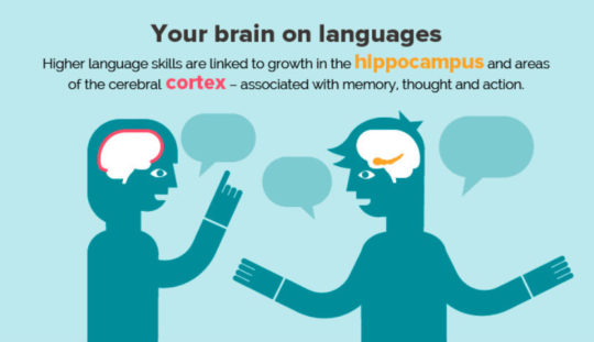 Your brain on languages