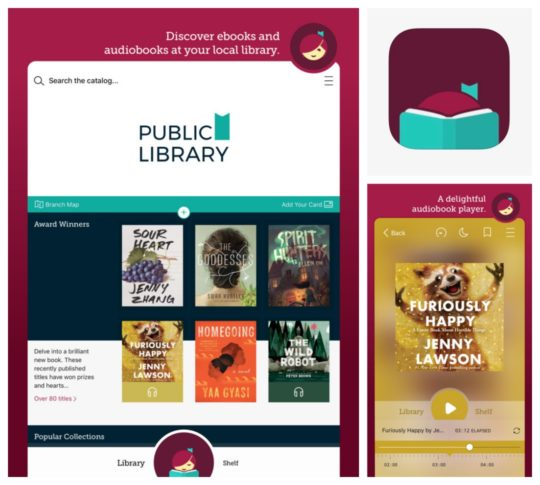 EBOOKS FOR IPAD FROM LIBRARY DOWNLOAD