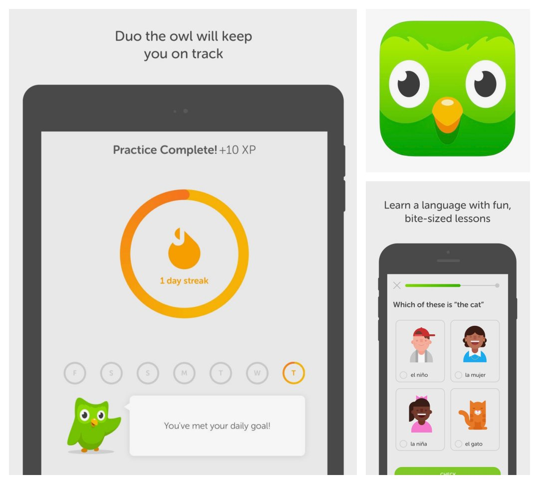 Duolingo - best language iPad and iPhone applications