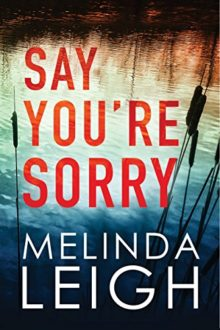 Amazon Kindle bestsellers of 2018 so far - Say You Are Sorry by Melinda Leigh