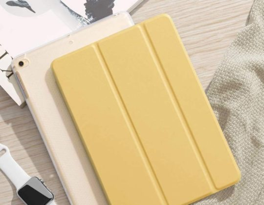Pastel iPad mini 5 tri-fold case cover