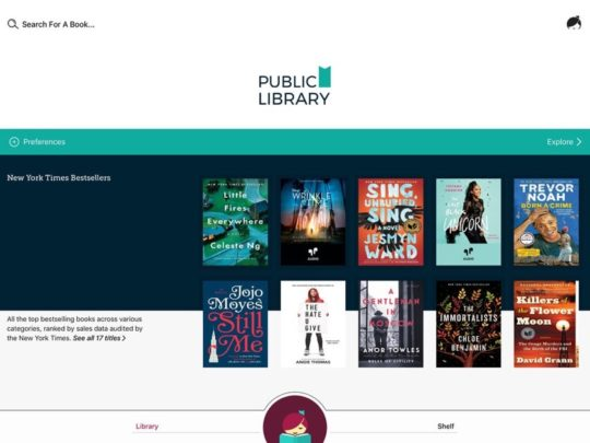Use Libby app by OverDrive on your iPad to borrow ebooks from multiple public libraries