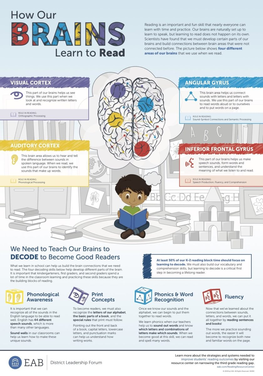How to help our brains learn to read - full size infographic
