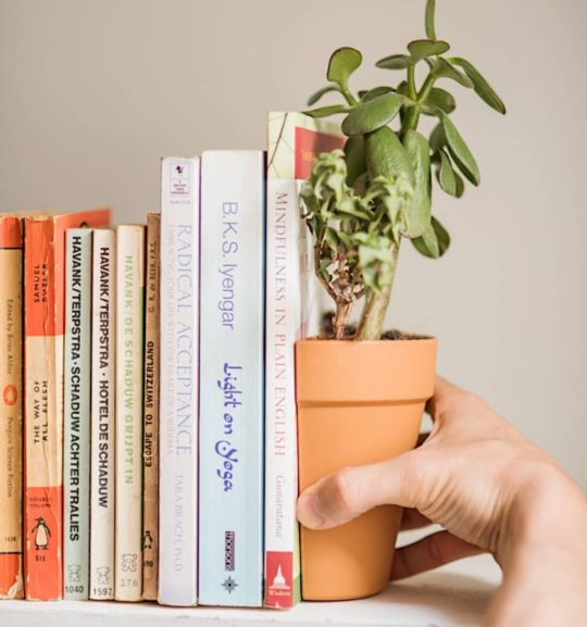 Living plant bookends