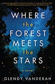Where the Forest Meets the Stars by Glendy Vanderah - best books for Kindle to get in 2019