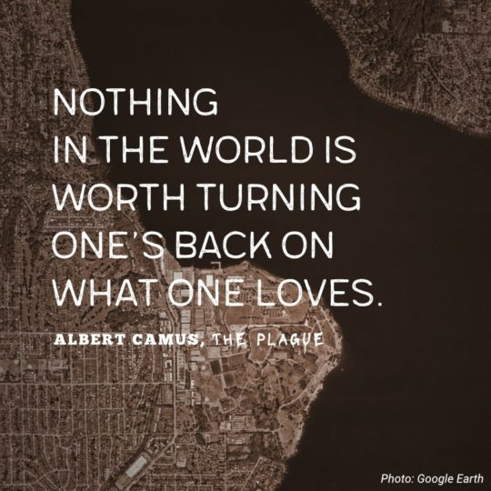 Nothing in the world is worth turning one's back on what one loves. - Albert Camus