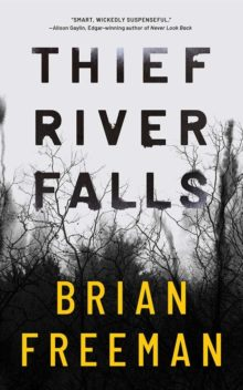 Thief River Falls by Brian Freeman - 2020 Amazon Kindle bestsellers so far