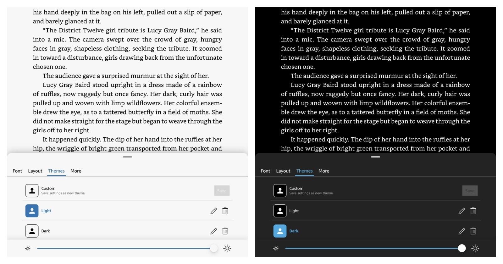 Kindle iPad custom themes available