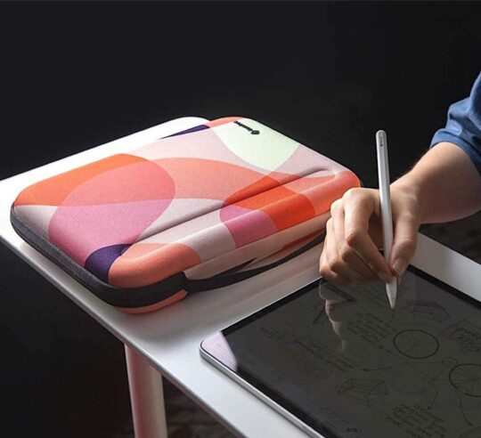Fashionable organizer iPad bag