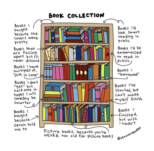 Book Collection - best cartoons about books