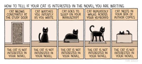 Cat likes novel you write - best cartoons about books