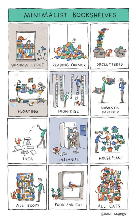 Minimalist Bookshelves by Grant Snider - best cartoons about books
