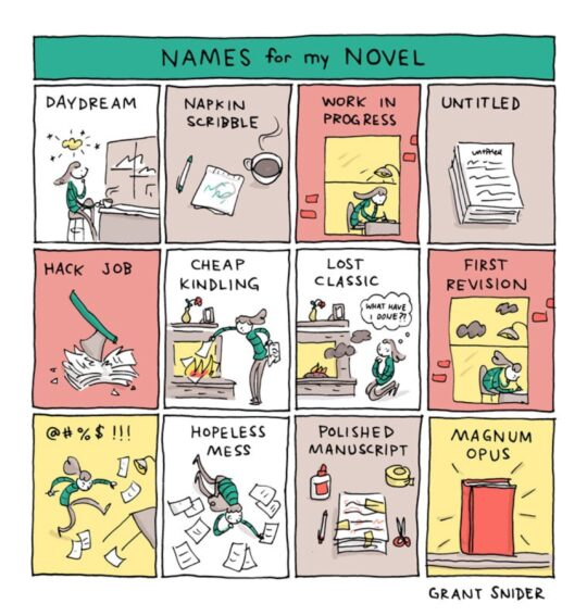 Name for My Novel by Grant Snider - best cartoons about literature