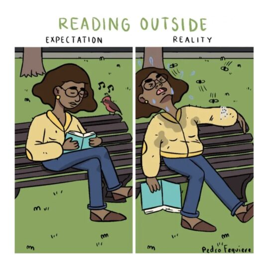 Reading Outside - best cartoons about reading